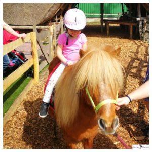 Jong meisje met roze shirt lacht vrolijk terwijl ze op een pony zit