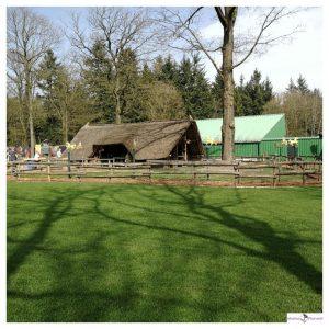 cottage met stal voor pony's